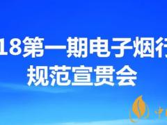 18第一期深圳电子烟行业规范宣贯会 解惑电子烟质量标准常识产权管理