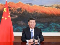 习近平在第十七届中国-东盟展会和中国-东盟商务与资金投入峰会开幕式上致词